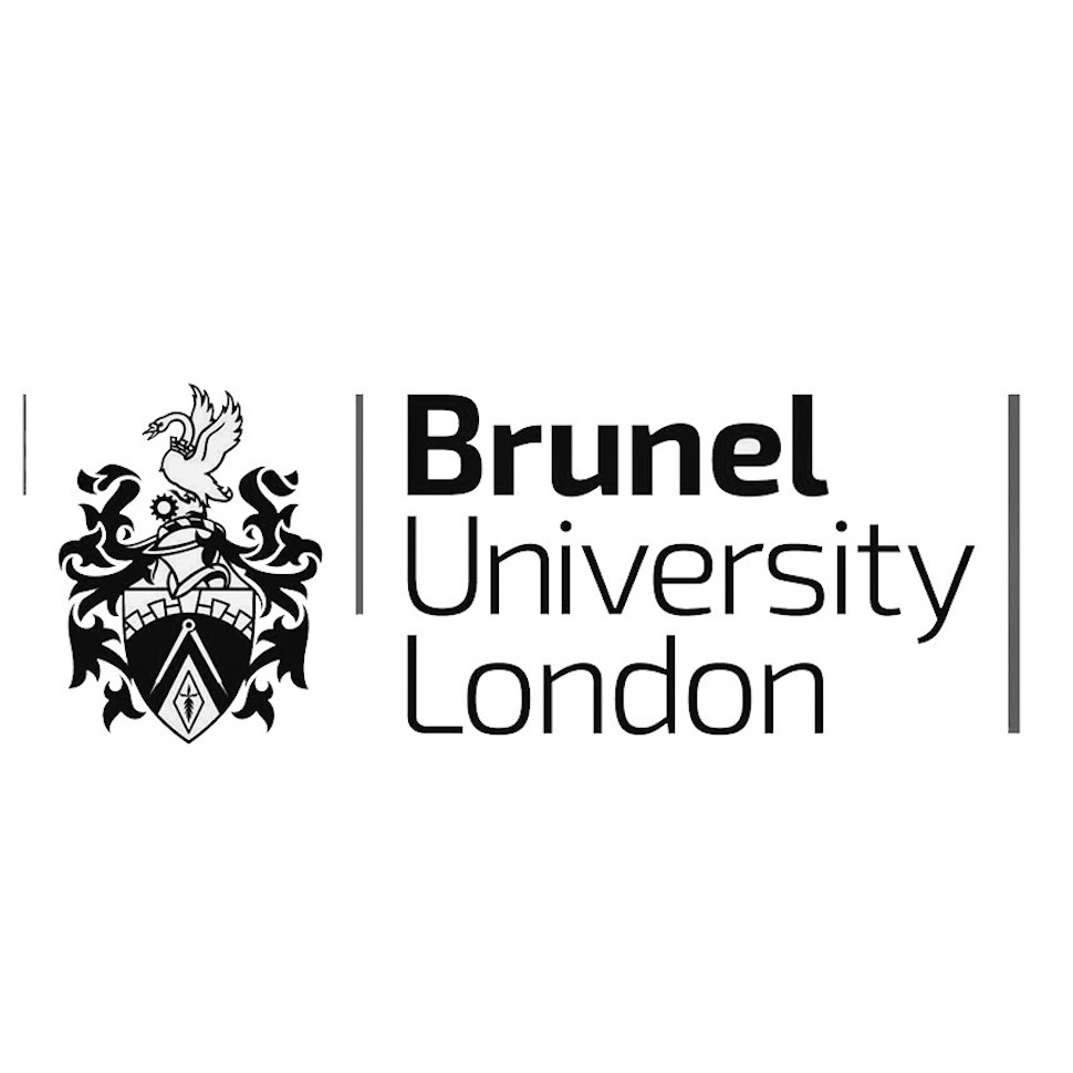 Meeting with the LTM Consortium at Brunel University, London